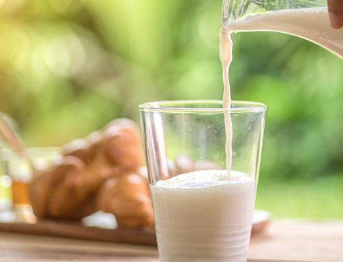 Il Salvagente prende di mira il latte bovino