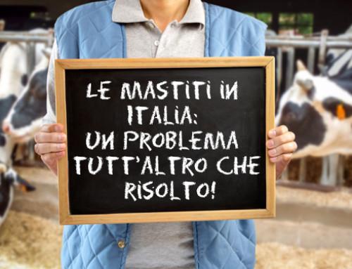 Le mastiti in Italia: un problema tutt'altro che risolto!