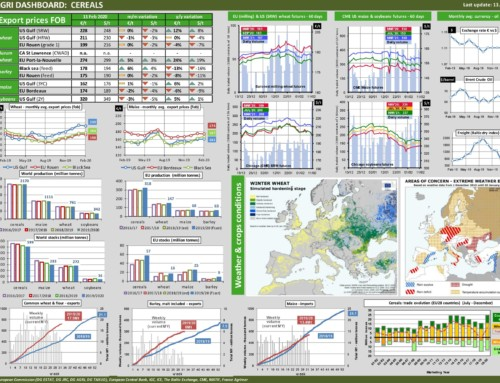 Dg agri dashboard: cereals – European Market Observatory – 13 febbraio