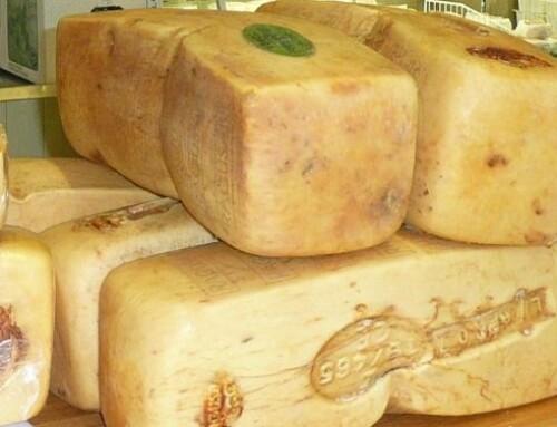 Ragusano DOP: il formaggio dell'estremo SUD