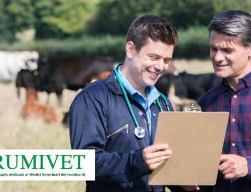 Nasce Rumivet, uno spazio riservato ai medici veterinari di ruminanti