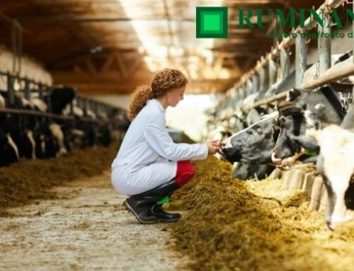 Sanità nei ruminanti: la Selezione degli articoli 2020 di Ruminantia Mese