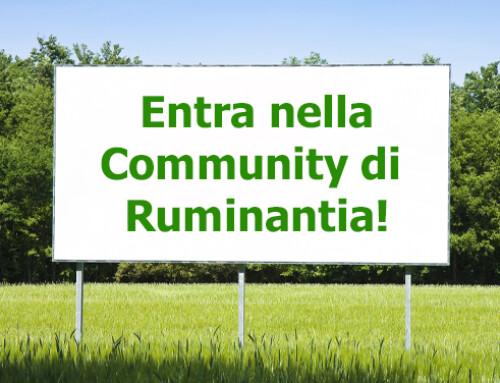 Entra a far parte della Community di Ruminantia